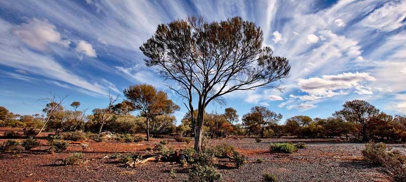 veter-avstraliya